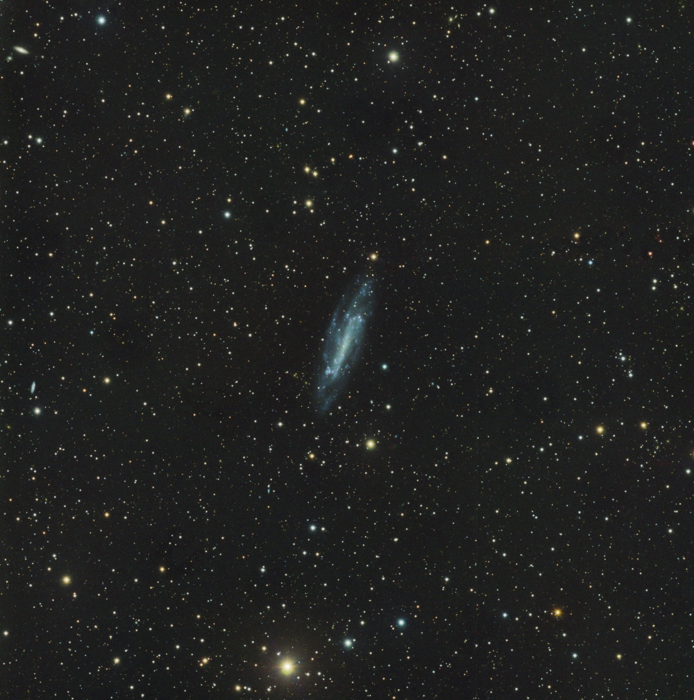 NGC 4236 Spiral Galaxy